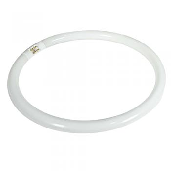 https://www.mayoristaelectronico.com/361-4651-thickbox_default/tubo-fluorescente-circular-t5-de-32w-y-245mm-de-diametro.jpg